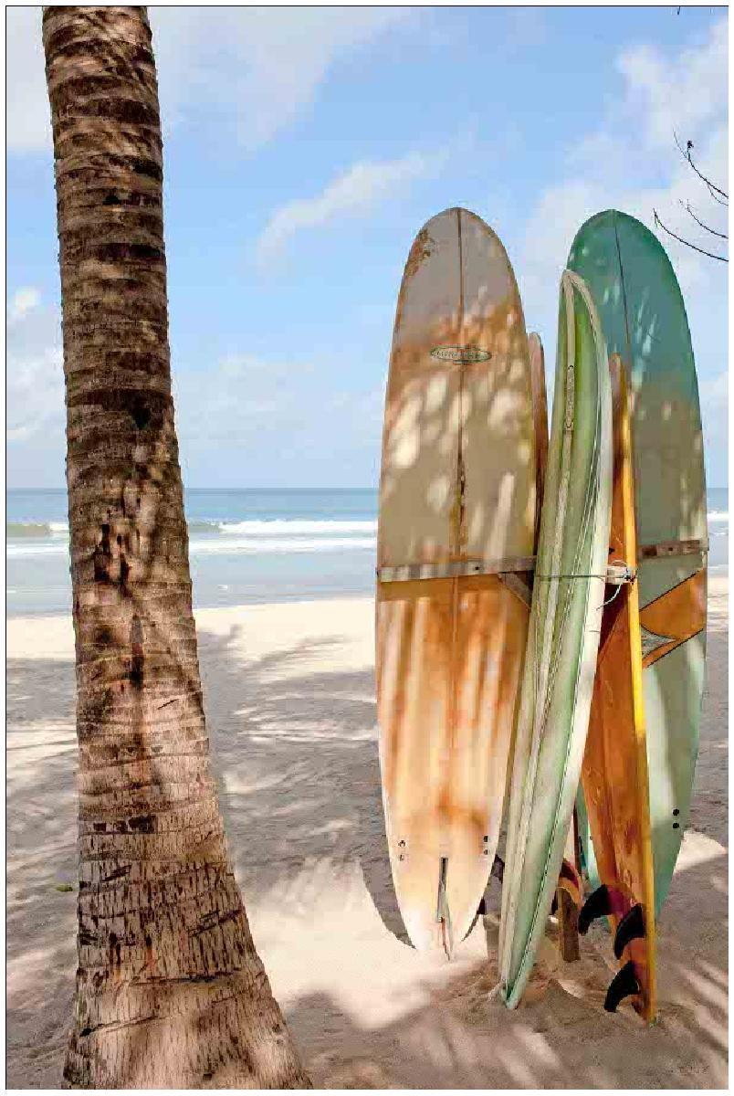 do plage surf -