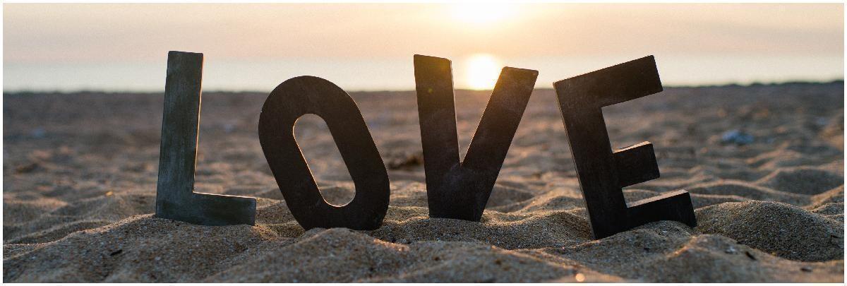 HA LOVE