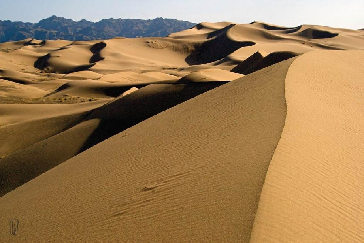 ed dunes