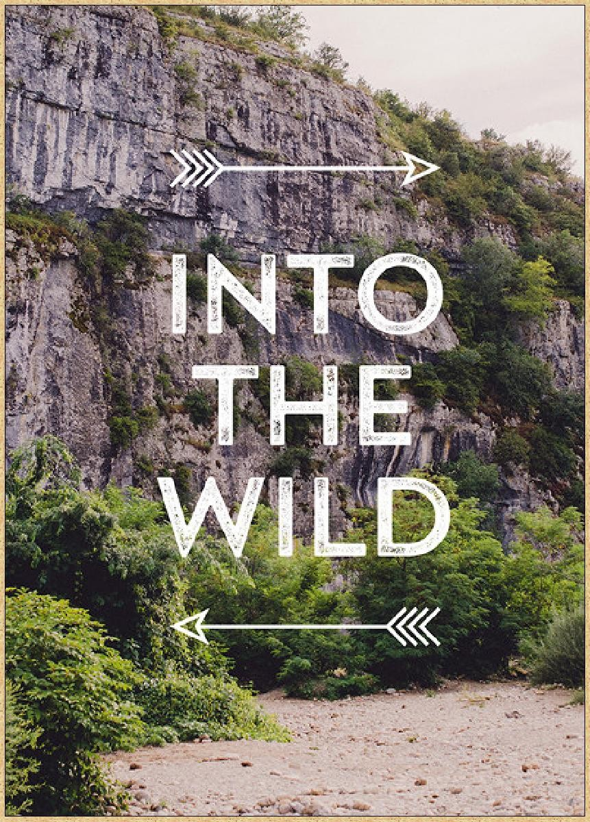 ha into wild