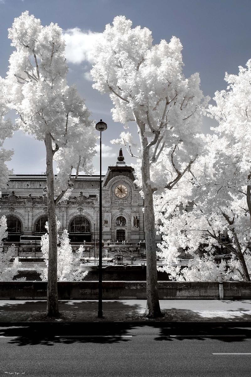 orsay sous la neige