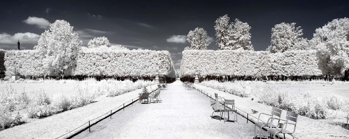 bancs sous la neige