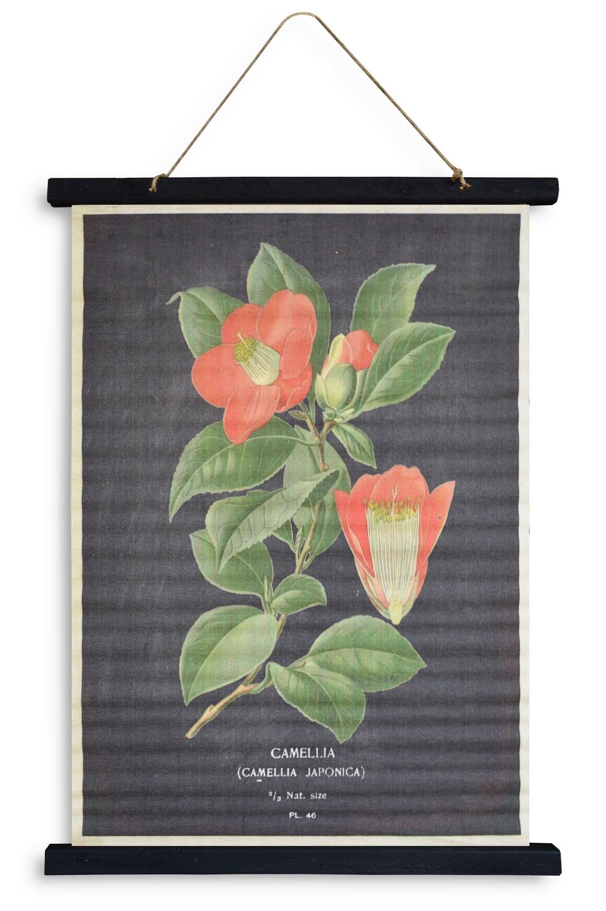 kakemono flower 50x70