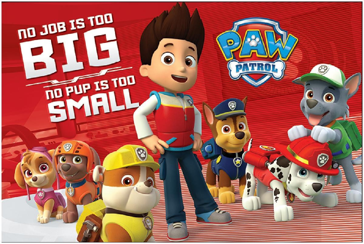 paw patrol big small