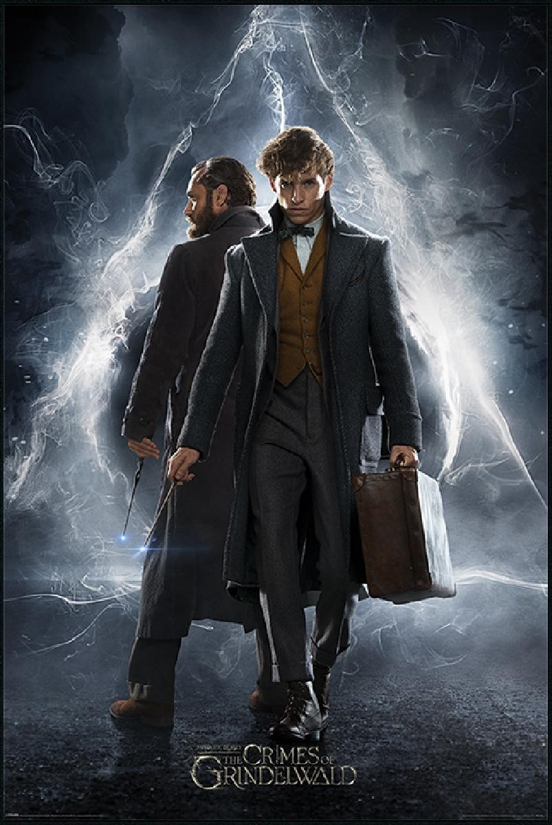 fantastic beasts newt & dumbledore