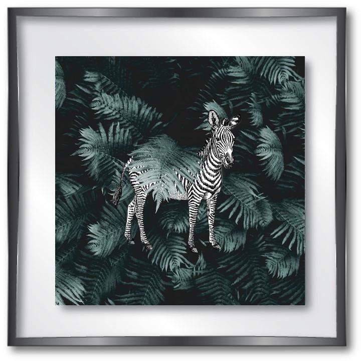 vitrine jungle zebre