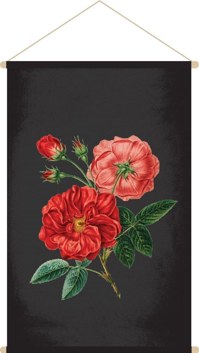 botanic red flower