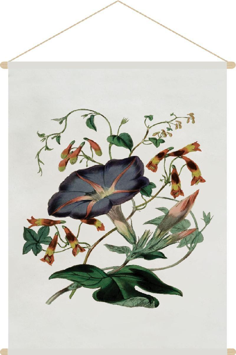 botanic blossom